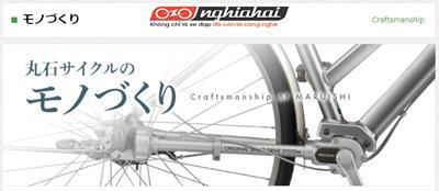 Xe đạp cào cào HNA 2733-3