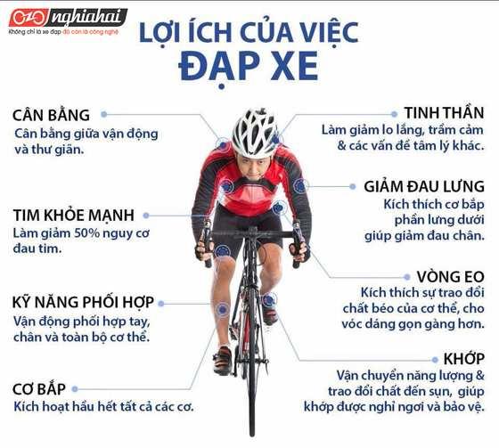 30 lợi ích tuyệt vời từ đạp xe ( phần 5 )4