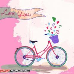 Lòng biết ơn đối với xe đạp 3