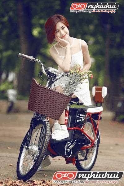 Hướng dẫn sử dụng xe đạp điện 1