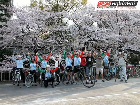 Làm thế nào để Tokyo có thể được xếp hạng thành phố đạp xe thân thiện thứ 9 trên thế giới (phần 2) 1