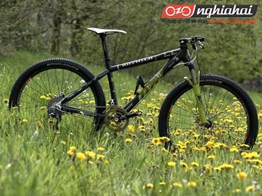 Biến xe đạp leo núi thành xe đạp chuyên dụng (phần 2) 3