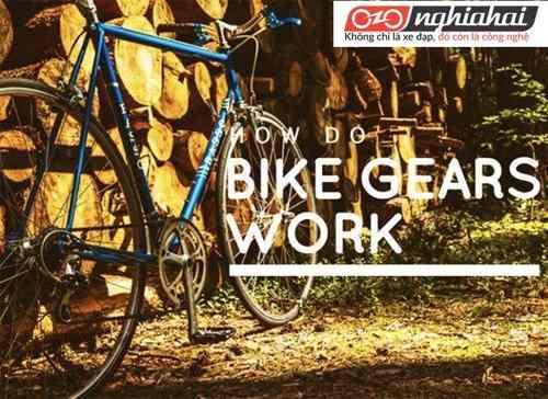 Làm thế nào để bắt đầu đi xe đạp đi làm 1