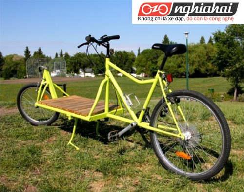 Xe đạp chở hàng tại Nhật Bản đang gặp phải khó khăn với thị trường Nhật Bản 2