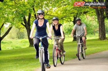 Đạp xe đạp rèn luyện sức khỏe 3