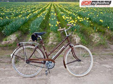 8 điều bạn không được làm khi đi xe đạp ở Nhật Bản 1
