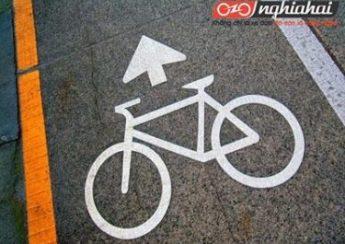 An toàn đường bộ cho người đi xe đạp 4