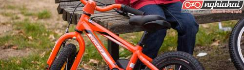 Cách chọn xe đạp và bộ đồ dùng cho xe đạp đầu tiên của con bạn 3