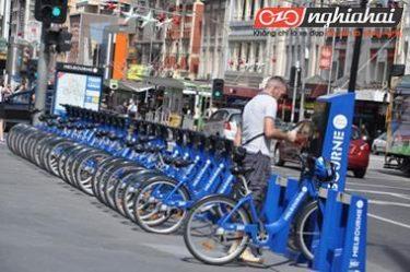 Hệ thống dịch vụ xe đạp công cộng thành phố 1