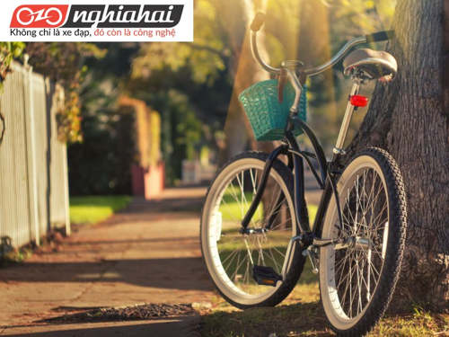 Làm sao để có thể đi mua sắm bằng xe đạp 1