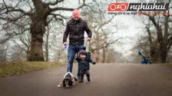 Lời khuyên hàng đầu cho việc đi bộ với trẻ mới biết đi và trẻ nhỏ 2