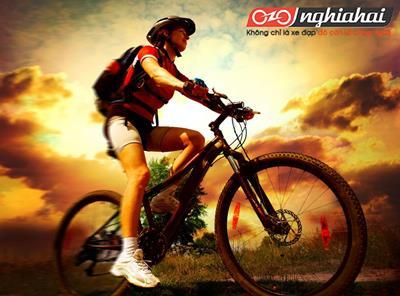 Những mẹo để giữ an toàn khi đạp xe 1