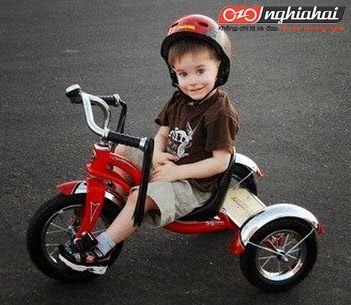 5 loại xe đạp ba bánh tốt nhất dành cho trẻ từ 2 đến 5 tuổi 3