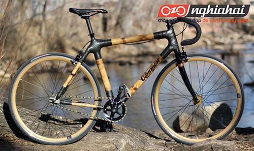 Top 5 chiếc xe đạp làm bằng tre đặc biệt và tốt nhất. 2