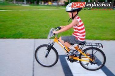 Đạp xe đạp an toàn cho trẻ em Những suy nghĩ hoang đường và sự thật 3