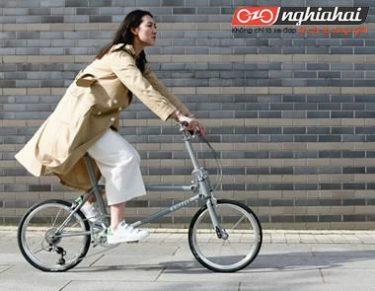 5 lợi ích hàng đầu của xe đạp gấp và lý do bạn cần nó! 1