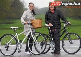 6 chiếc xe đạp đô thị tốt nhất có giá dưới 15 triệu đồng 2