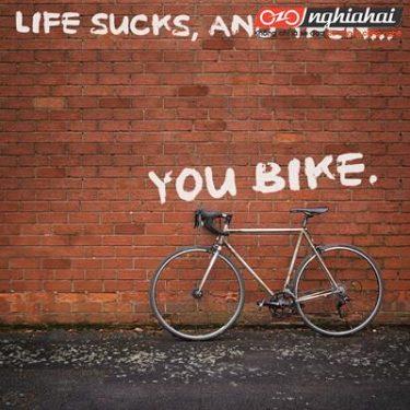 6 mẹo giúp bạn tạo động lực đi xe đạp 1