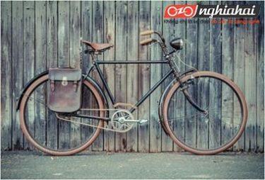 Chọn thương hiệu xe đạp tiết kiệm tiền hay thêm giá trị 1