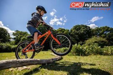 Mọi thứ bạn cần biết về xe đạp cho trẻ em 4