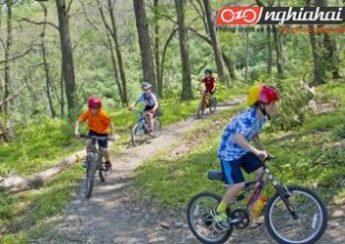 Xe đạp leo núi cho trẻ em và những điều cha mẹ cần biết 1