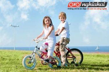3 cách cho bạn chọn một xe đạp trẻ em chất lượng 2