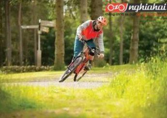 3 mẹo nhỏ đạp xe để đạp xe khoẻ mạnh hơn 4