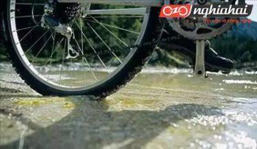 Bạn đi xe đạp leo núi, nhưng bạn có hiểu đặc tính của lốp xe đạp leo núi 3