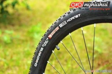 Bạn đi xe đạp leo núi, nhưng bạn có hiểu đặc tính của lốp xe đạp leo núi 4