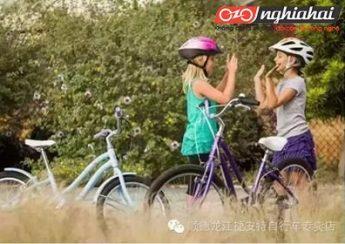 Các khái niệm cơ bản về đi xe đạp mà người mới bắt đầu đi xe đạp 1