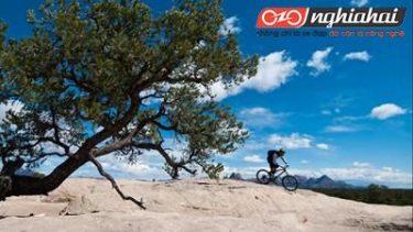 Hướng dẫn cho người mới bắt đầu 9 câu hỏi thường gặp về đi xe đạp 4