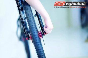 Bảo dưỡng xe đạp thể thao,kinh nghiệm sửa chữa xe đạp thể thao 2