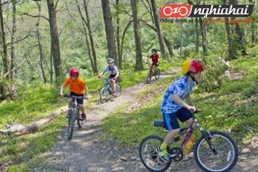 Một chiếc xe đạp leo núi thiết kế chuyên dụng cho trẻ em 1
