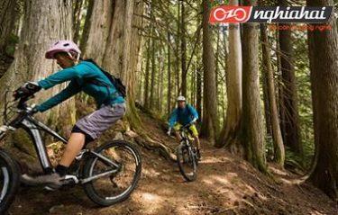 Một số phương pháp rèn luyện cho thể lực đi xe đạp leo núi 3