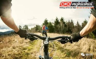 Những tác hại của việc đi xe đạp không đúng cách, không thể không nói đến! 2