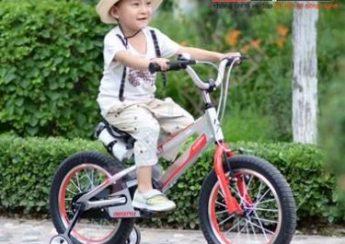 Xe đạp trẻ em có cần bộ giảm xóc không 1