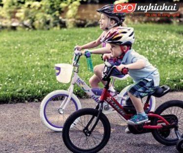 Xe trượt không giống như xe đạp 2