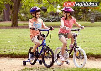 Xe trượt không giống như xe đạp 3
