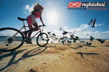 Đạp xe vừa bảo vệ môi trường vừa tốt cho sức khỏe, vậy rốt cuộc đạp xe có thể giảm béo hay không 4