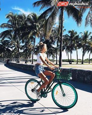 Cẩm nang đạp xe đạp mini mùa hè bổ ích cho bạn. 2