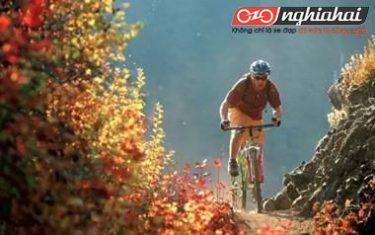 Những bí quyết bảo dưỡng xe đạp leo núi người bình thường không biếtNhững bí quyết bảo dưỡng xe đạp leo núi người bình thường không biết4
