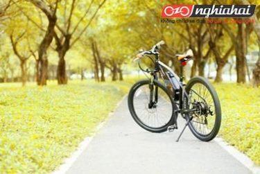 Những lợi ích từ việc đạp xe 3