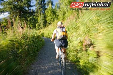 Sự khác nhau giữa xe đạp địa hình và xe đạp thể thao 2