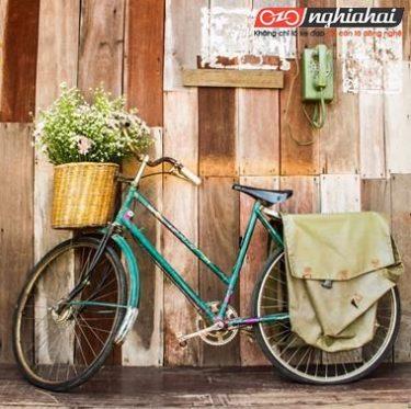 Đạp xe mùa hè an toàn: phương pháp thay thế dây phanh và dây biến tốc 3