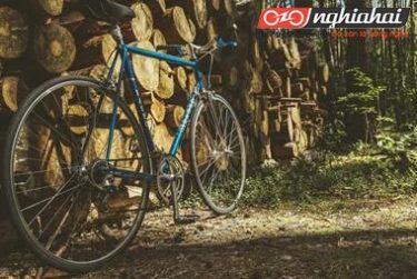 4 kiểu xe đạp đường phố nhập môn đạp xe cho bạn tham khảo 3