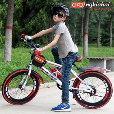 Xếp hạng thương hiệu xe đạp dành cho trẻ em 8 tuổi 1