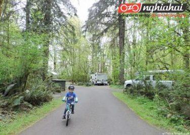 Đánh giá xe đạp WOOM3 bước chuyển đổi từ xe đạp cân bằng sang xe đạp thông thường 3