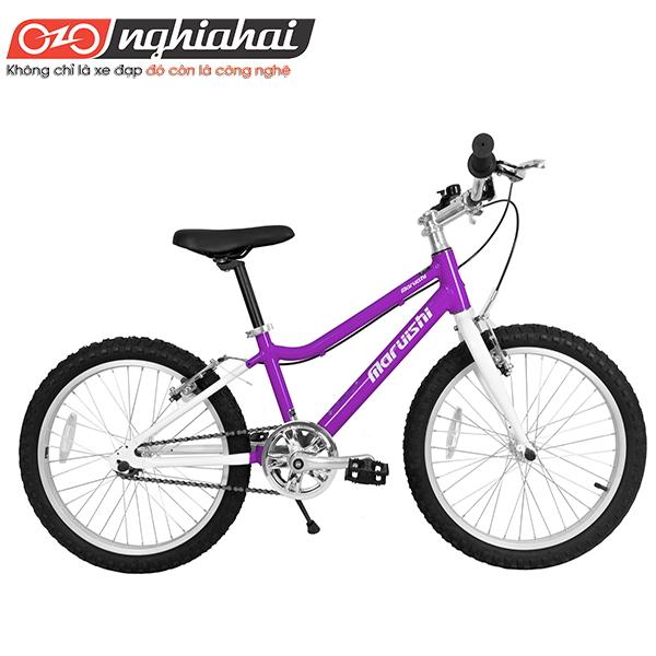Xe đạp trẻ em Future Star 1