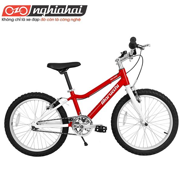 Xe đạp trẻ em Future Star 2
