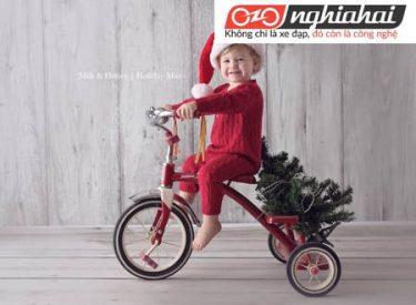 Cách chọn một chiếc xe đạp trẻ em an toàn3